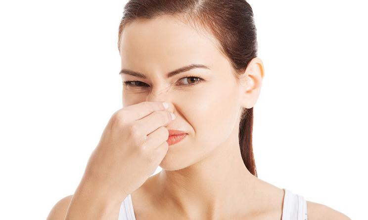 Tuberías con malos olores koysa fontanería