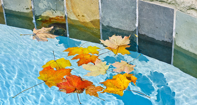 5 trucos para mantener la piscina después del verano